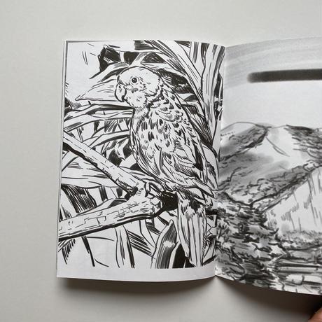 白根ゆたんぽ|抽象、具象、その他 美女など