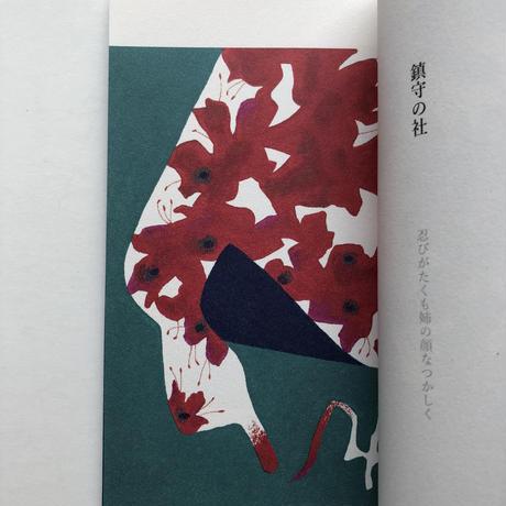 泉鏡花 著 武藤良子 挿絵 龍潭譚(別冊付)