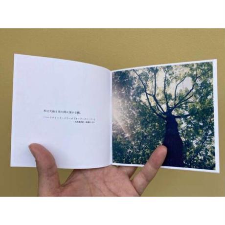 小林英治/ TREES