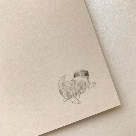 イケガミヨリユキ/ 絵葉書haruhi(2枚組)
