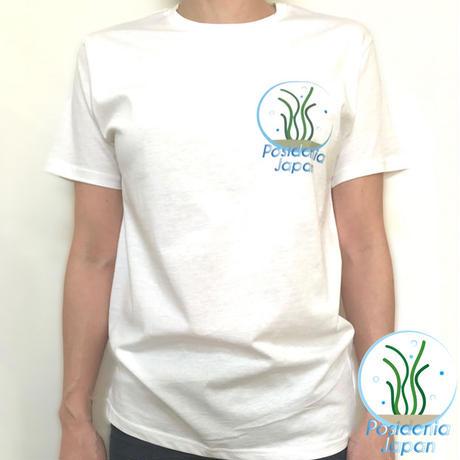 Organic Cotton クルーネックTシャツ