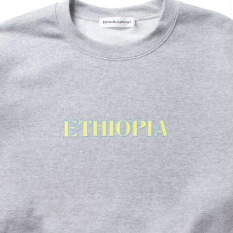 Ethiopia Crewneck Sweatshirt / Grey