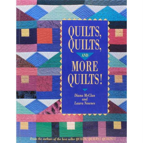 QUILTS,QUILTS, and MORE QUILTS!  / Diana McClun and Laura Nownes