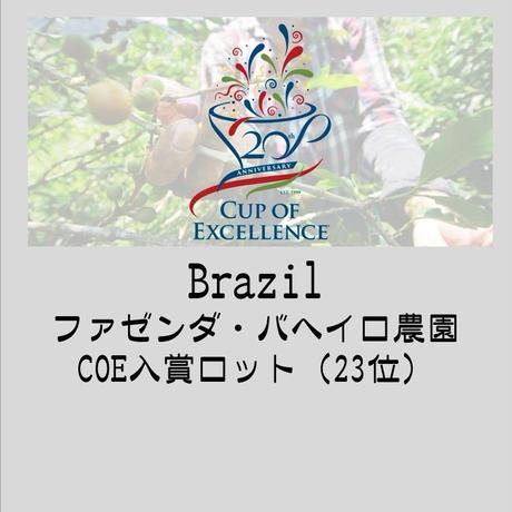 【ブラジルCOE入賞豆】ブラジル  ファゼンダ バヘイロ農園  100g