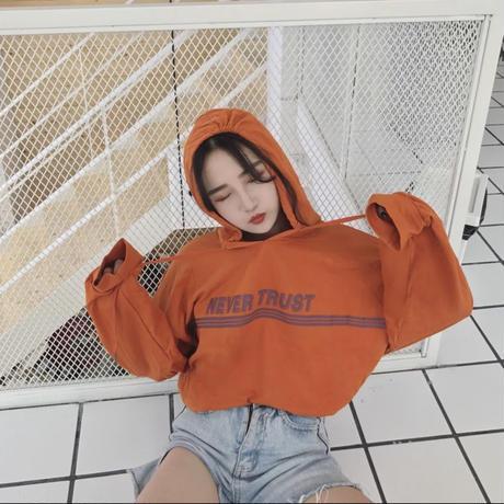【お取り寄せ商品】pullover hoodie sweater  パーカー フーディー LT03
