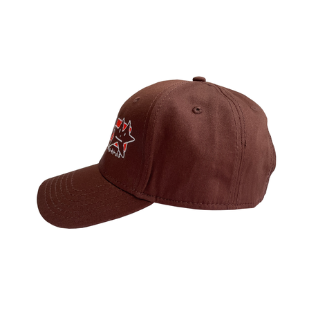 FROG LAZY STER CAP BROWN