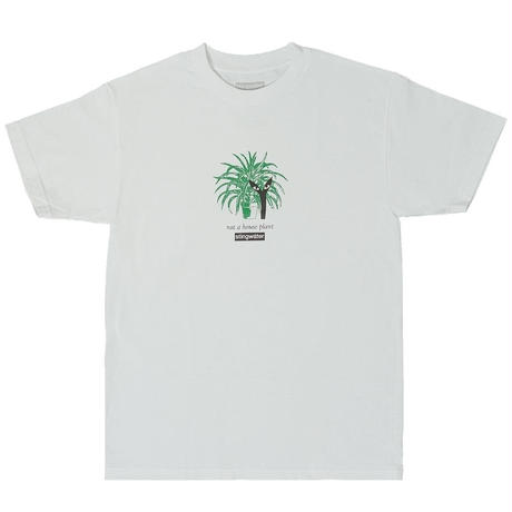 STINGWATER Not a house plant T shirt white