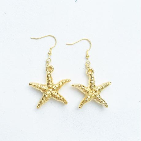 starfish pierce