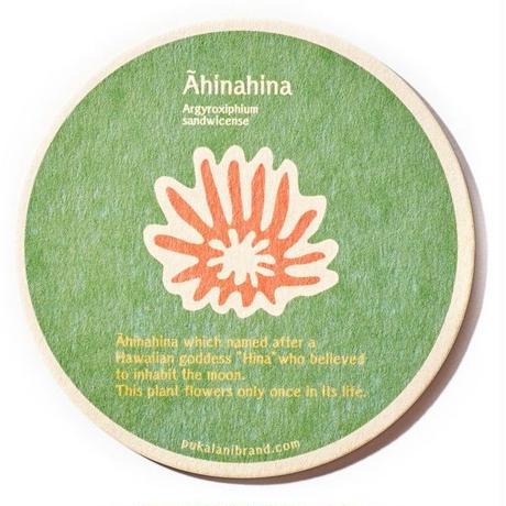 ahinahina coaster