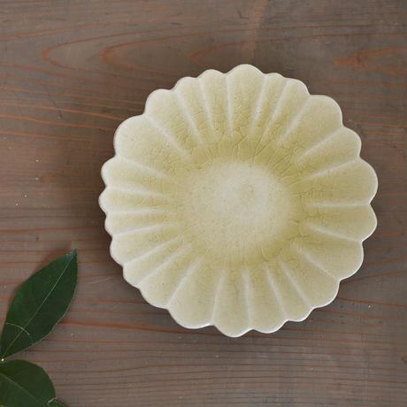 たくまポタリー ハナ 7寸皿 はちみつ釉