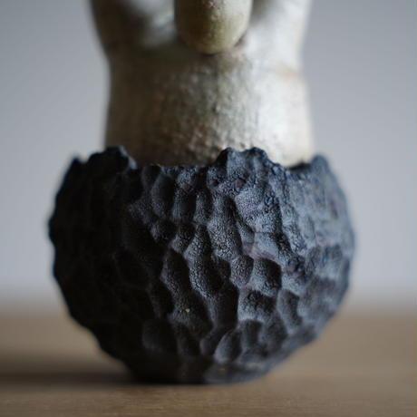 Pachypodium rosulatum var. gracilius × Tomoharu Nakagawa植木鉢〈幹幅6.1cm〉