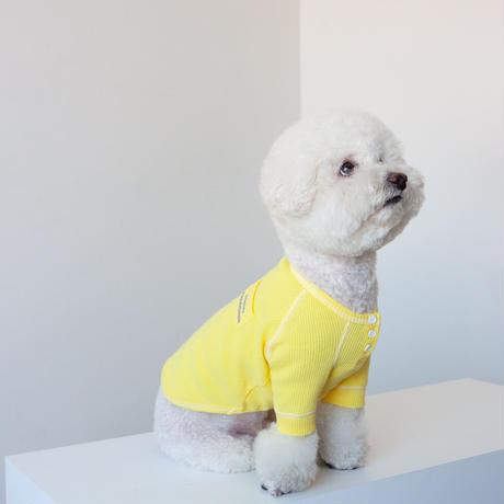 【DENTIST APPOINTMENT /デンティスト アポイントメント】waffle pajama tee(ワッフルパジャマティー)-yellow