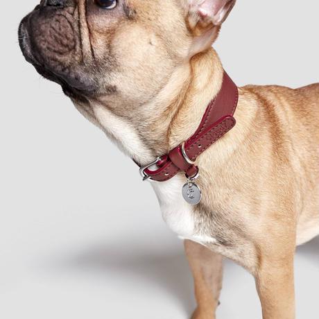 【Cloud7/クラウド7】DOG Collar Vondelpark  (レザーカラー)Sサイズ-Burgundy