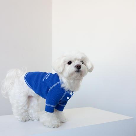 【DENTIST APPOINTMENT /デンティスト アポイントメント】waffle pajama tee(ワッフルパジャマティー)-blue