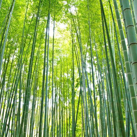 QuantoBasta 国産燻し竹のマルチベラ 左利き用