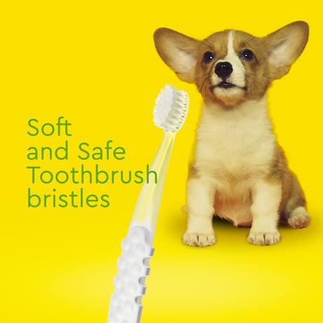 子犬用(0〜18ヶ月) 歯ブラシ& オーガニック歯みがきジェル(22.7g)セット