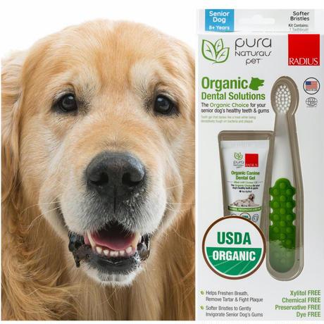 シニア犬用(8才〜) 歯ブラシ& オーガニック歯みがきジェル(22.7g)セット