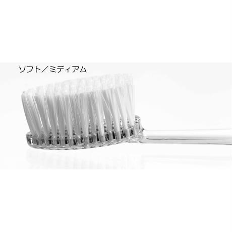 ラディウス替ブラシ(ソース、トラベル歯ブラシ専用)