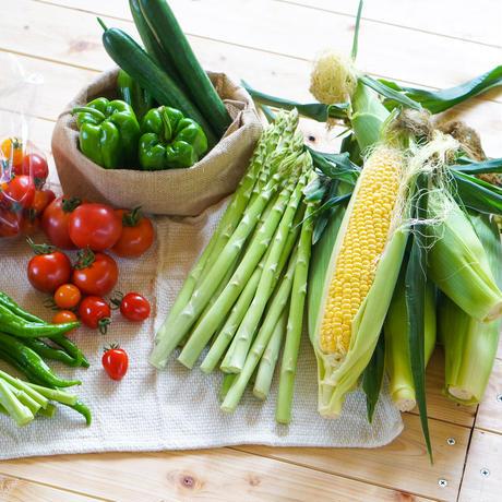 楽園倶楽部の夏のおすすめ旬野菜セットA