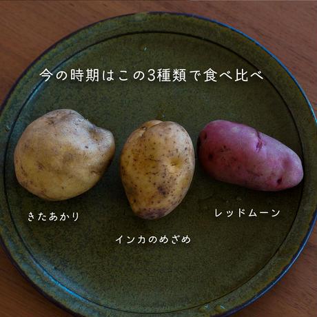 【ご予約】新じゃが インカ/きたあかり/レッドムーン 味比べセット(ミニサイズじゃがのおまけ付)