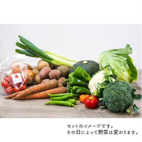 楽園倶楽部のおすすめ旬野菜セットA【秋のセット】