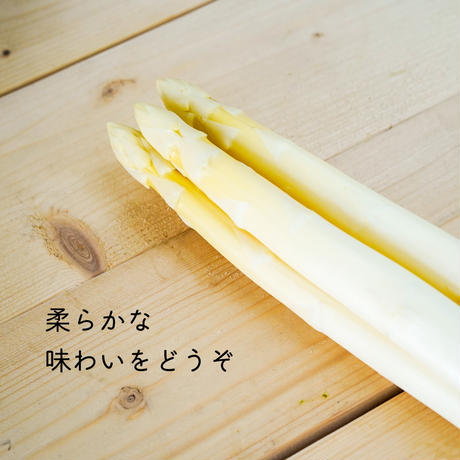 【先着30セット限定】極太アスパラ 3色食べ比べ 1kgセット【ご注文後3〜7日で発送】