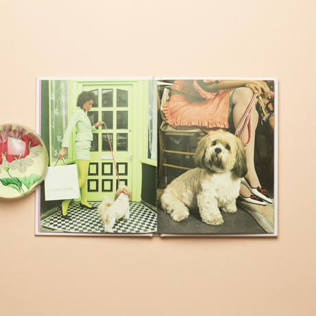 【 Poodle Parlour: One Picture Book #47 】Nancy Honey