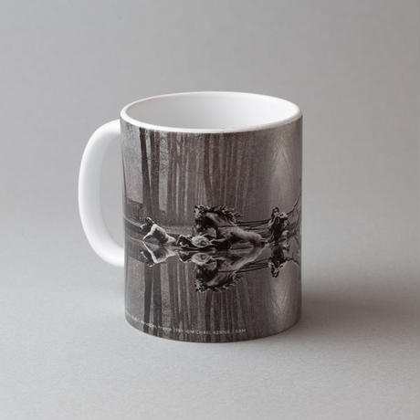 【 A 45 YEAR ODYSSEY   (Mug) 】Michael Kenna