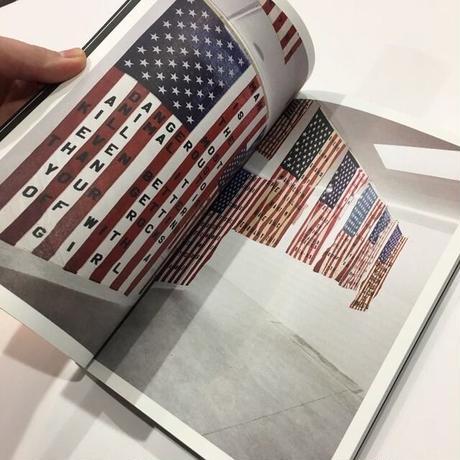 29 Flags by Cali Thornhill DeWitt