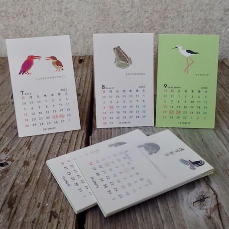 【しまのなかま】自立式極小カレンダー2020