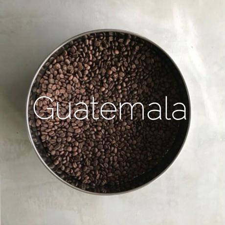 Guatemalaグアテマラ・エスペランサ ラ・ベガ✎200g