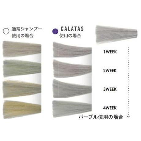 カラーシャンプー カラタスNH2+Sv カラーシャンプーシルバー