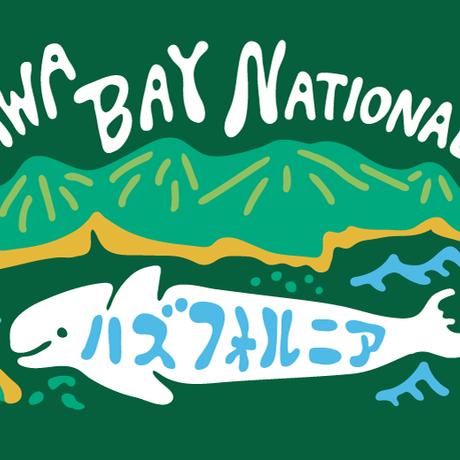 三河湾 勝手に国立公園 MIKAWABAY NATIONAL PARK メッシュキャップ