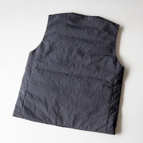 THE NORTH FACE PURPLE LABEL / Down Vest ND2959N (メンズ)