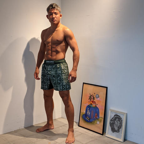 RB PAISLEY FIGHT SHORTS