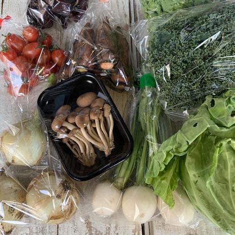 富士山麓野菜 ファミリーセット