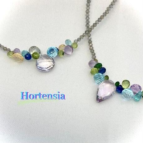 Hortensia(オルテンシア)