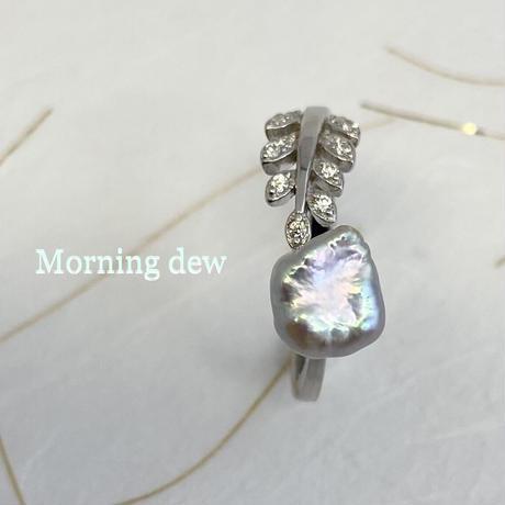 Morning dew(朝露)