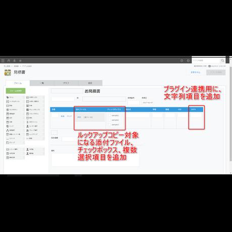 kintone ルックアップコピー拡張プラグイン Ver.5(試用版)