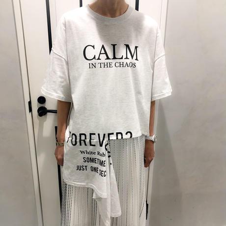 asymmetry tshirt (grey)