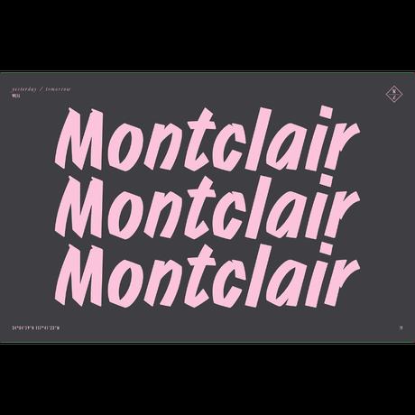 WONDERLAND【MONTCLAIR 01】 Matt Black / Gold / Bronze Lens