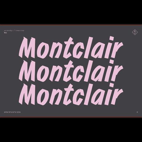 WONDERLAND【MONTCLAIR 10】Clear Beach Glass / Antique Rose Gold / Green Lens