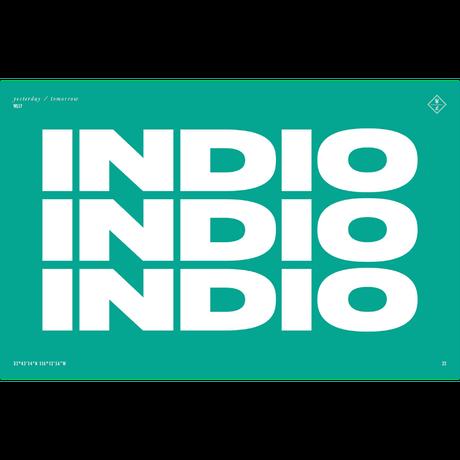 WONDERLAND【INDIO 12】 Matte Black Metal / Dark Bronze Lens