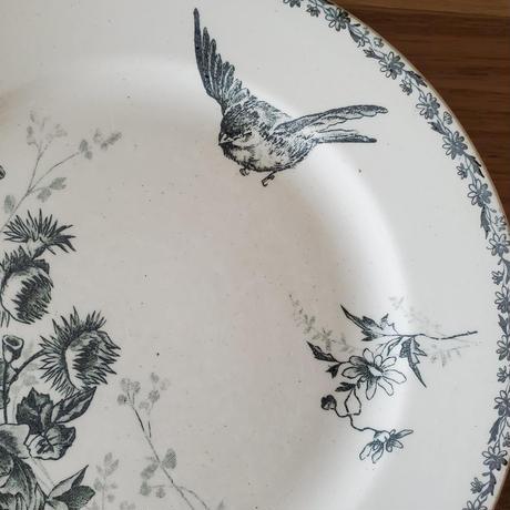 ショワジー ル ロワ HB&CIE小鳥のプレート