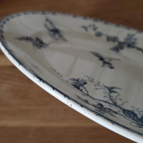 サルグミンヌ 植物と蝶のオーヴァルプレート/大皿