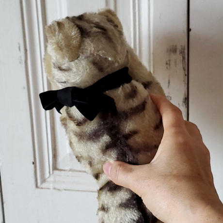 お眠り猫Floppy kitty Cat