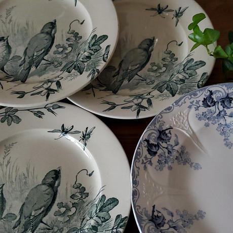 ヴィエイヤー ボルドーのディナープレート 小鳥たちの語らい#1