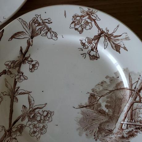 Creil&Montereau クレイユモントロー 桜のプレート#1