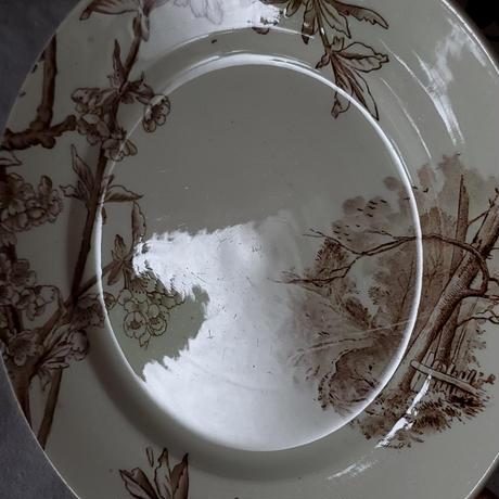 クレイユモントロー 桜のプレート 樹木