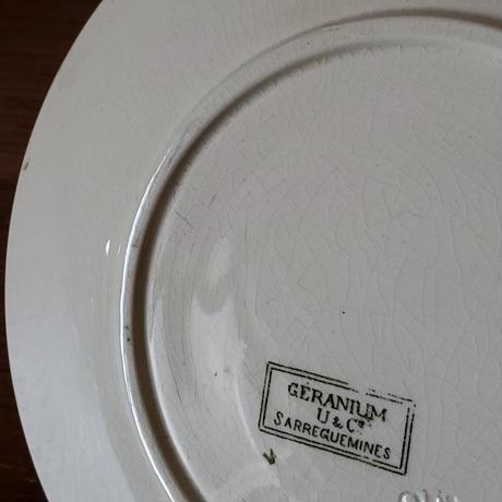 サルグミンヌ ゼラニウムのプレート#3